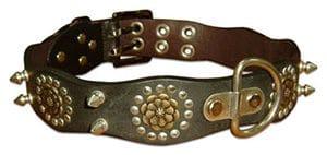 Backbonehalsband450
