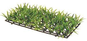 Plantmat2