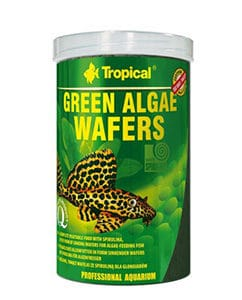 Tropicalalgwafers450