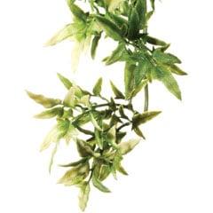 Exo-Terra Croton 60 cm