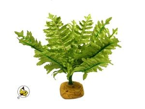 Exo-Terra Boston Fern 20 cm