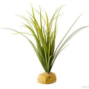 Exo-Terra Turtle Grass Acorus 25 cm