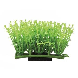 plantpad1