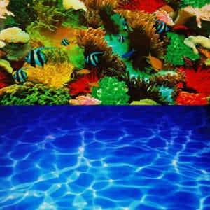 Fotobakgrund Paradise/Blue Sea 60 cm