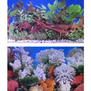 Fotobakgrund Växt/Salt (1) höjd 60 cm