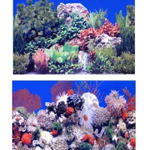 Fotobakgrund Växt/Salt (2) höjd 60 cm