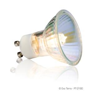 Exo-Terra Halogenlampa 35 W