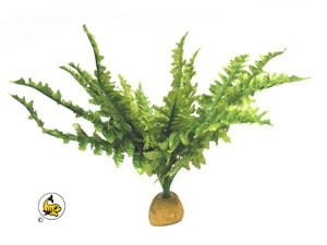 Exo-Terra Boston Fern 28 cm