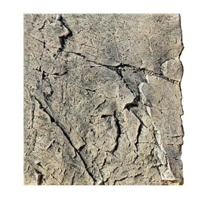 BTN Slim-Line White/Limestone 60 A