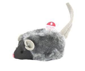 Squiekymus grå